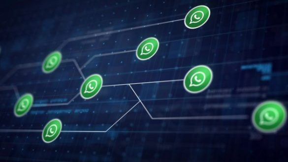 Everything You Need To Know About WhatsApp Privacy Policy